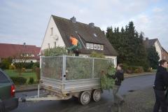 Tannenbaumrückholaktion_2018_Bild(16)